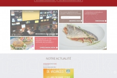 Média réf. 449 (1/4): Sites Internet officiels du groupe Ash Events